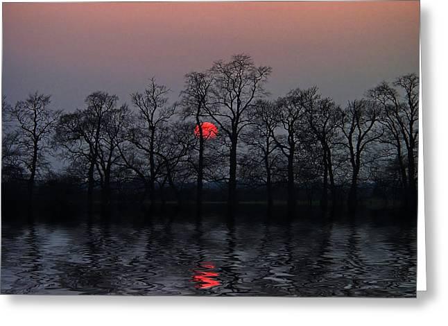 Silent Sun Greeting Card by Joachim G Pinkawa