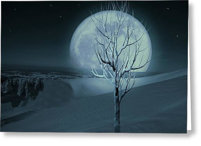 Silent Winter Evening  Greeting Card