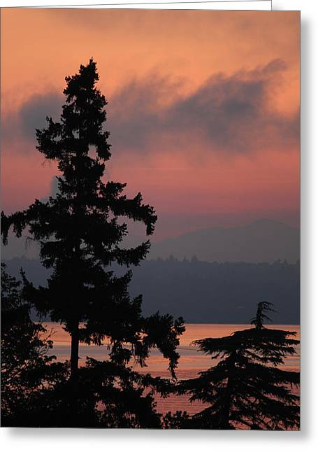 Greeting Card featuring the photograph Silhouette At Sunrise by E Faithe Lester