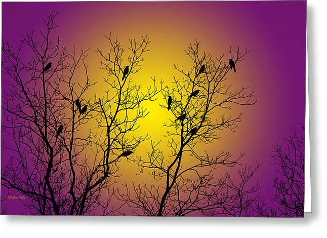 Silhouette Birds Greeting Card