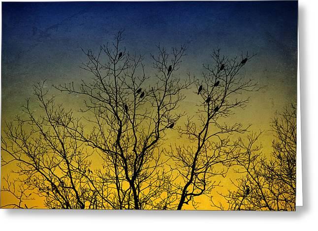 Silhouette Birds Sequel Greeting Card