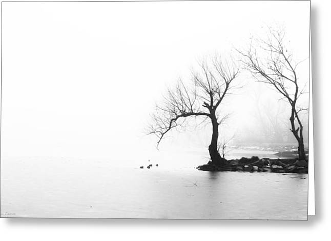 Greeting Card featuring the photograph Silhouette In Fog by Yvonne Emerson AKA RavenSoul