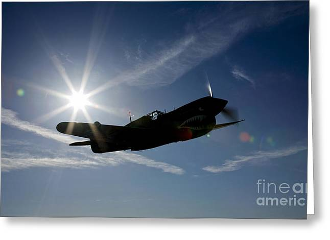 Silhouette Of A Curtiss P-40e Warhawk Greeting Card