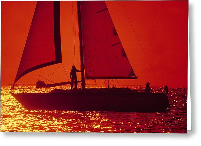 Silhouette Of A Sailboat In A Lake Greeting Card by Panoramic Images