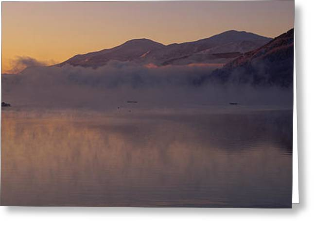 Silhouette Of A Tree In A Lake, Loch Greeting Card by Panoramic Images