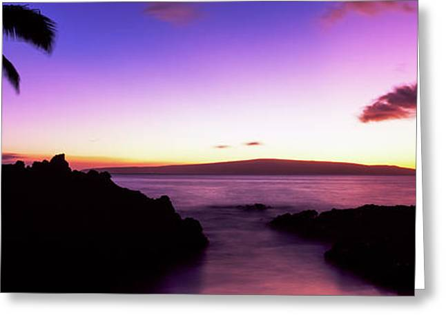 Silhouette Of Palm Trees At Dusk, Maui Greeting Card