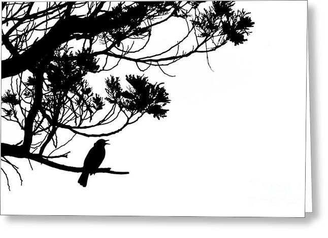 Silhouette Of Singing Common Blackbird In A Tree Greeting Card