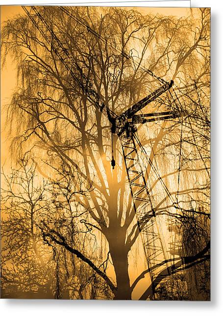 Silhouette Of Trees And Crane Greeting Card