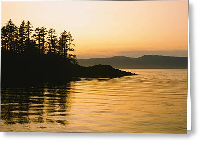 Silhouette Of Trees In An Island Greeting Card by Panoramic Images