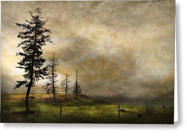Silhouettes In The Storm Greeting Card by Theresa Tahara