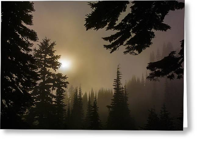 Silhouettes Of Trees On Mt Rainier II Greeting Card