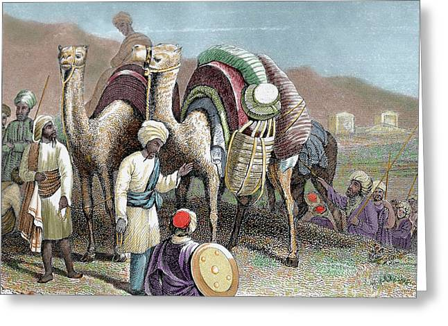 Silk Road Caravan Of Camels Resting Greeting Card by Prisma Archivo