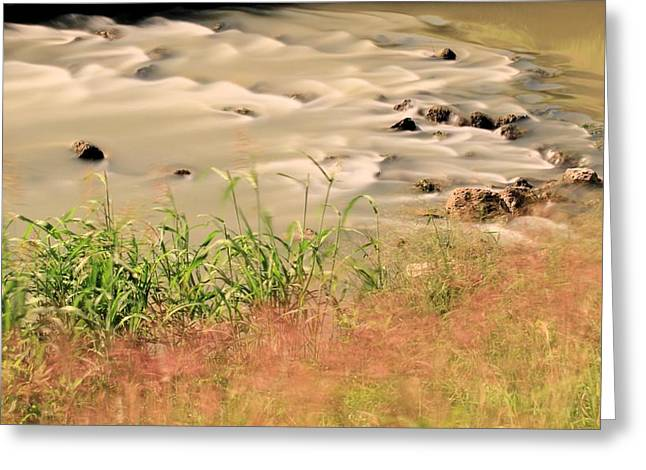 Water Rock And Dancing Grass Greeting Card by Katrina Lau