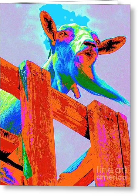 Silly Billy In Many Colors Photo Impressionism Greeting Card by Annie Zeno