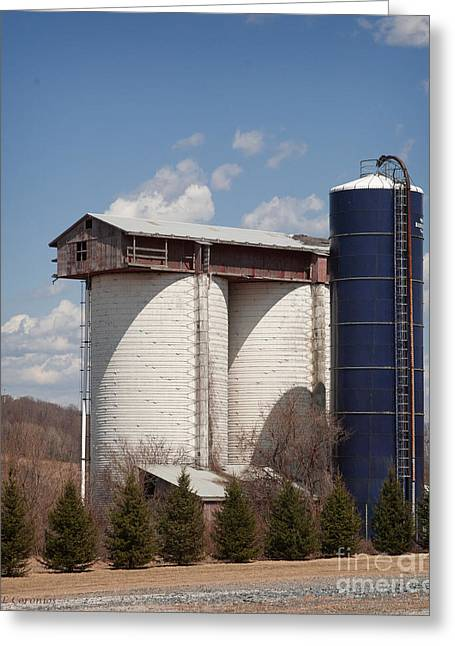Silo House With A View - Color Greeting Card by Carol Lynn Coronios
