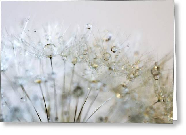 Silver And Gold Greeting Card by Marianna Mills