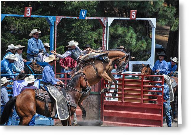 Silver Buckle Chute #4 Greeting Card