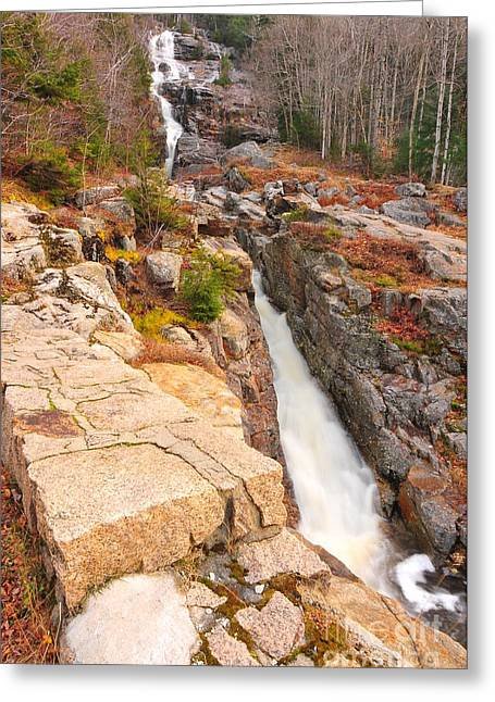 Silver Cascades  Greeting Card by Catherine Reusch Daley