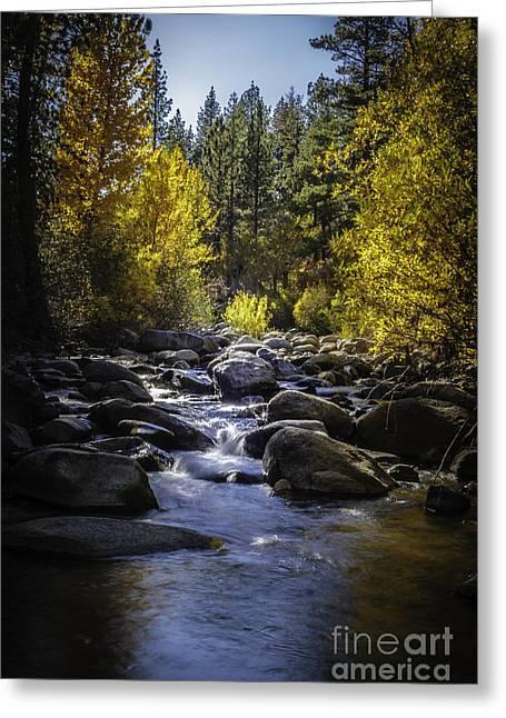 Silver Creek Greeting Card by Mitch Shindelbower