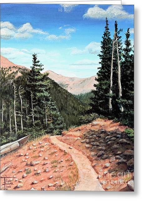 Silver Dollar Trail Colorado Greeting Card