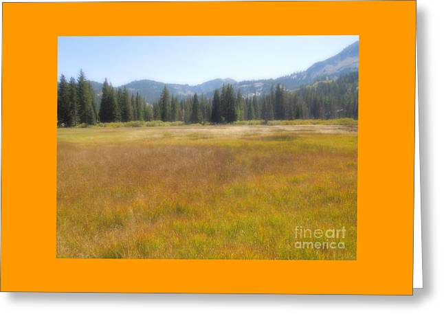 Silver Lake Area Big Cottonwood Canyon Utah Greeting Card by Richard W Linford