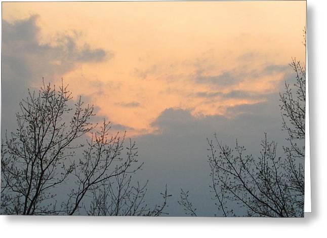 Silver Springs Sky Greeting Card by Jaime Neo