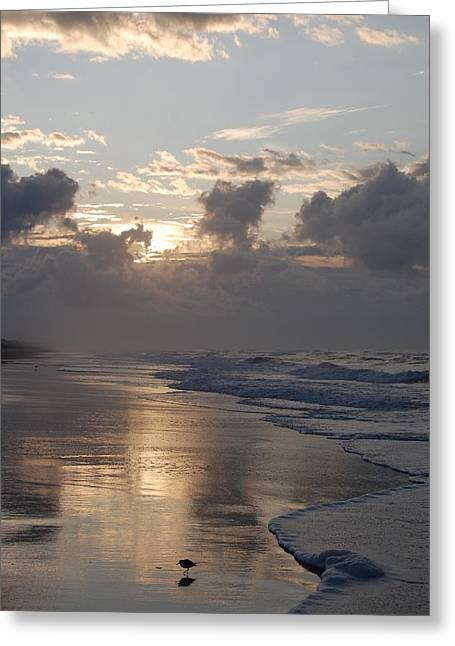 Greeting Card featuring the photograph Silver Sunrise by Mim White