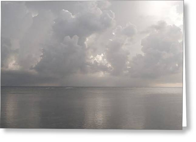 Silvern Sea Greeting Card by Amar Sheow