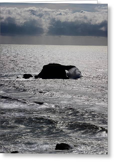 Silvery Ocean Sheen Greeting Card by Wernher Krutein
