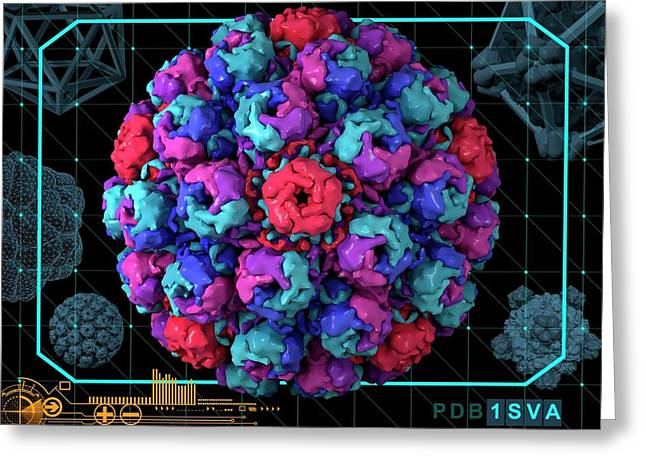 Simian Virus 40 Greeting Card by Laguna Design/science Photo Library