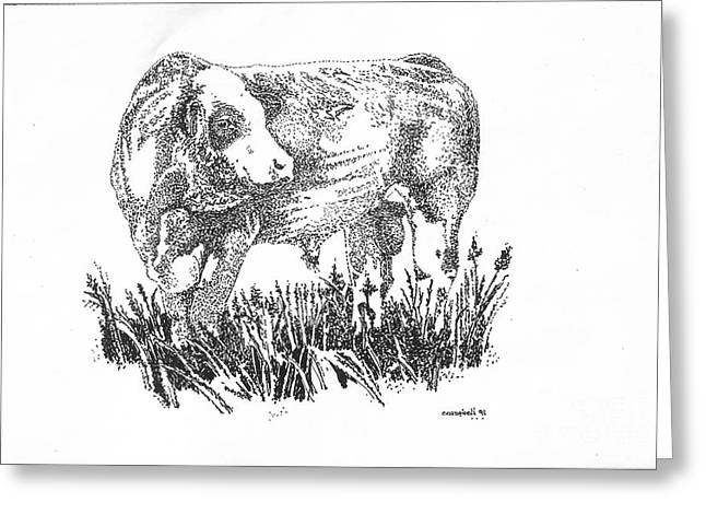 Greeting Card featuring the drawing Simmental Bull by Larry Campbell