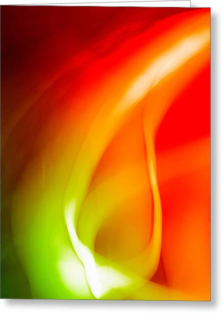 Simplicity Of Motion Greeting Card by Tom Druin