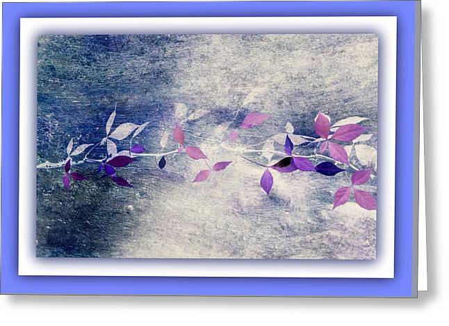 Simplicity  Greeting Card by Rosanne Jordan