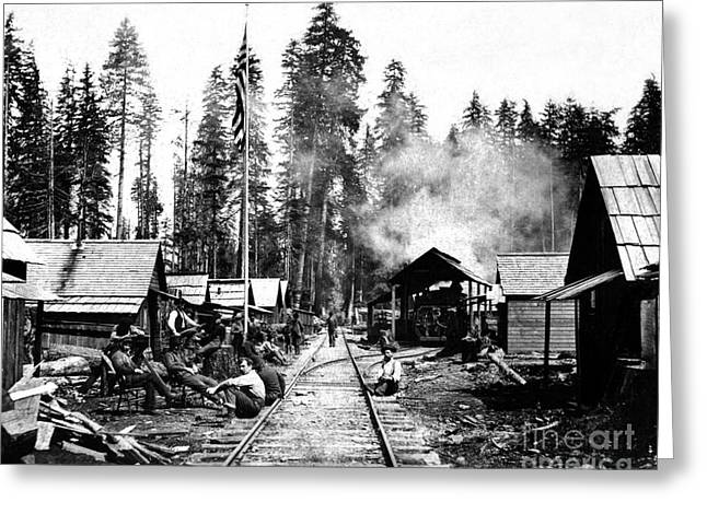 Simpson Timber Company Logging Camp Greeting Card
