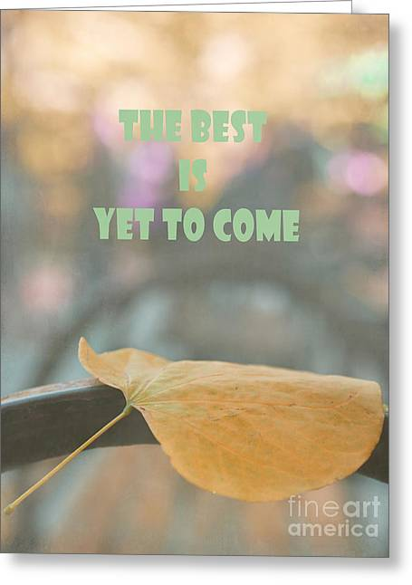 Single Leaf In The Park Greeting Card by Irina Wardas
