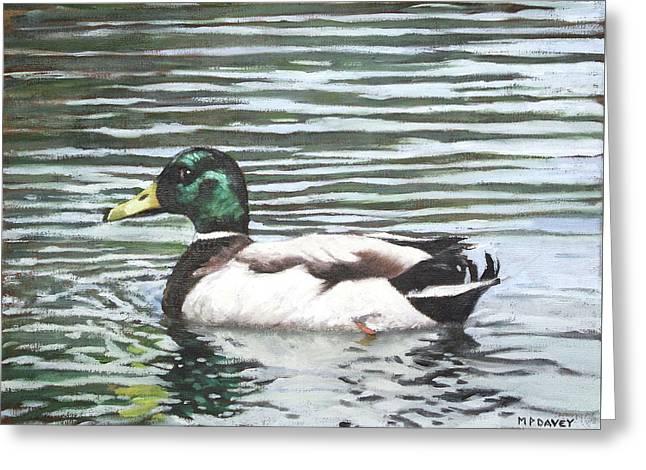 Single Mallard Duck In Water Greeting Card by Martin Davey