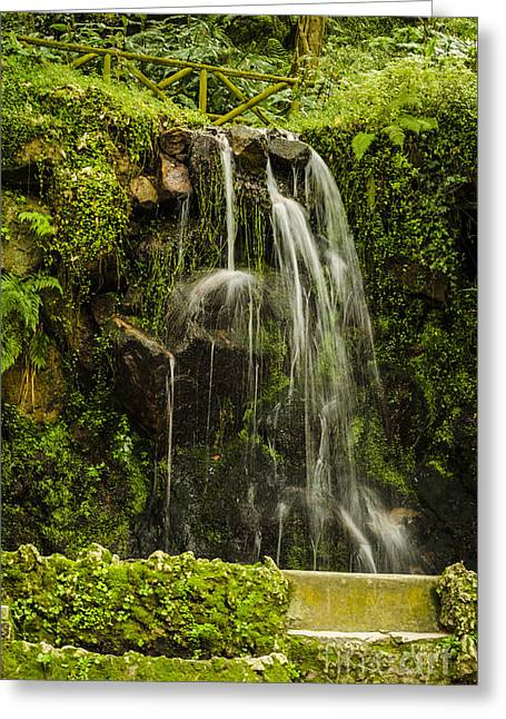 Sintra Waterfall Greeting Card by Deborah Smolinske