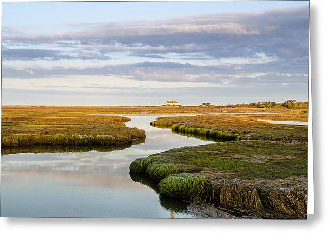 Sippewissett Marsh Greeting Card