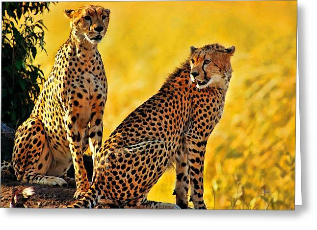 Sister Cheetahs Greeting Card