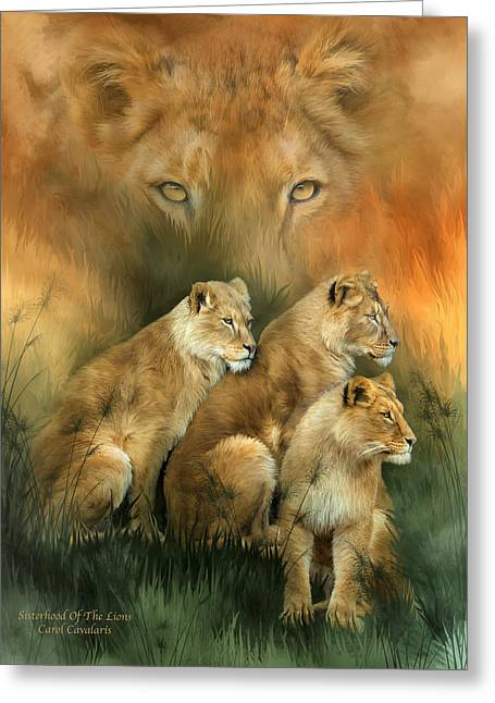 Sisterhood Of The Lions Greeting Card by Carol Cavalaris
