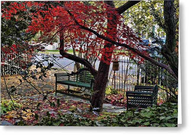 Sit Down And Relax Greeting Card by Robert Culver