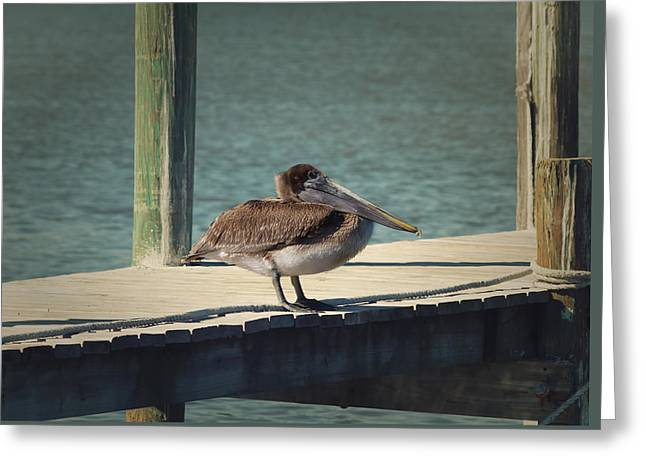 Sitting On The Dock Of The Bay Greeting Card