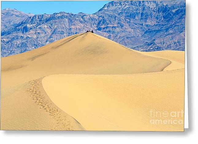 Sitting Pretty -top Of A Large Sand Dune In Death Valley National Park In California Greeting Card by Jamie Pham