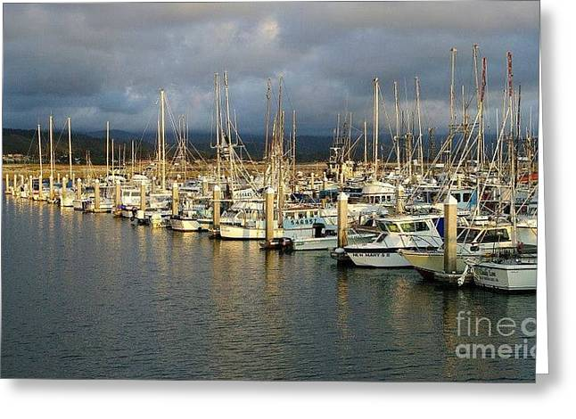 Sitt'ng On The Dock Of Half Moon Bay Greeting Card by Jah Mackey