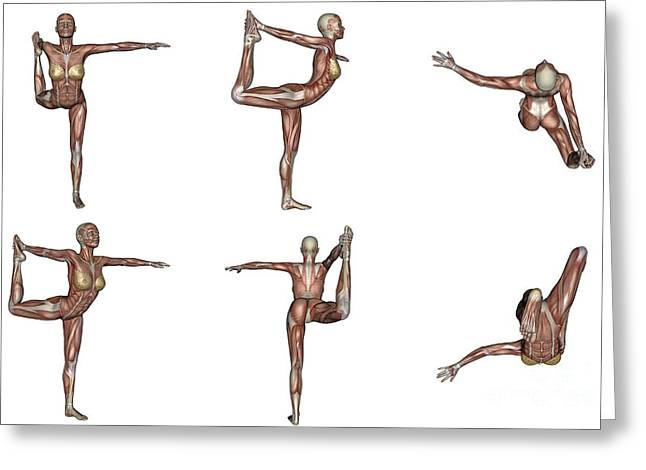 Six Different Views Of Dancer Yoga Pose Greeting Card by Elena Duvernay
