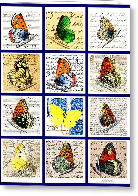 Sixteen Butterflies Greeting Card by Marian Cates