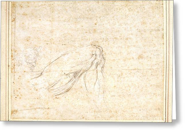 Sketch By Michelangelo Greeting Card by British Library