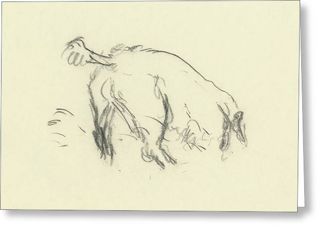 Sketch Of A Dog Digging A Hole Greeting Card by Carl Eric Erickson