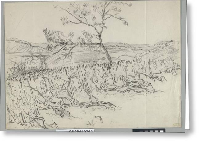 Sketch Of Vineyard Greeting Card by Carl Oscar August Erickson