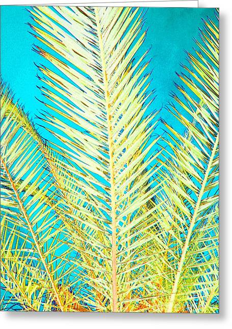 Sketchy Palm Fronds Greeting Card by Jeanne Forsythe